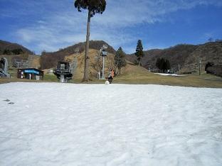 雪と桜_b0177436_14245553.jpg