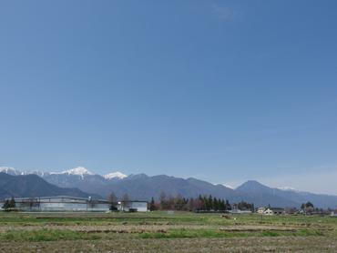 春色の風景_a0014840_20545856.jpg