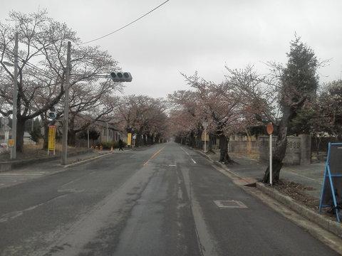 福島の被災地を歩く_b0050651_12181076.jpg
