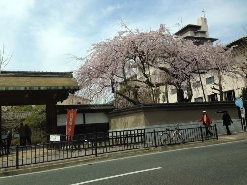 春爛漫_f0347891_22242573.jpeg