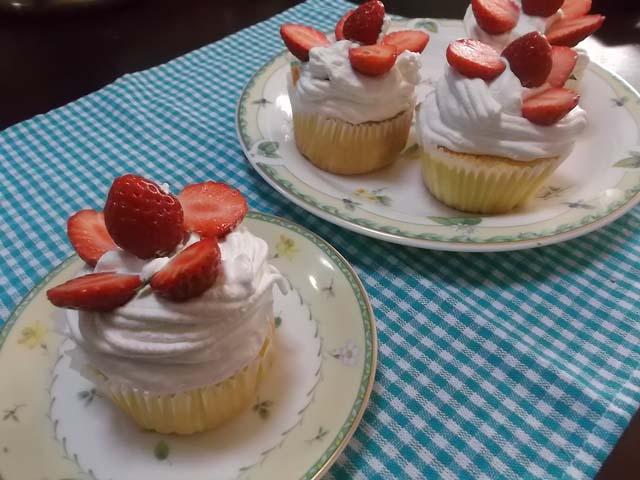いちごのプチケーキ&キクザキイチゲ_f0019498_12101436.jpg