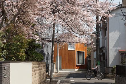 桜の外観写真をHPに追加しました_b0183404_23193597.jpg