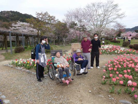 4/6 野原公園_a0154110_10342664.jpg