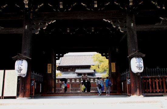 16桜だより40 東寺五重塔と桜_e0048413_16213974.jpg