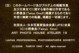 a0217029_1250818.jpg