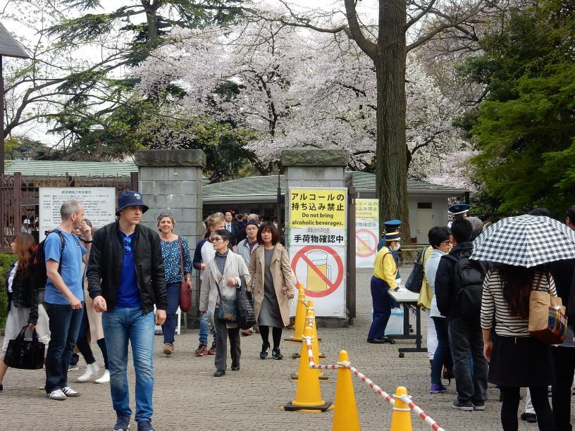 イースター(復活祭)休暇中の京都、大阪はにぎわってました_b0235153_1095693.jpg