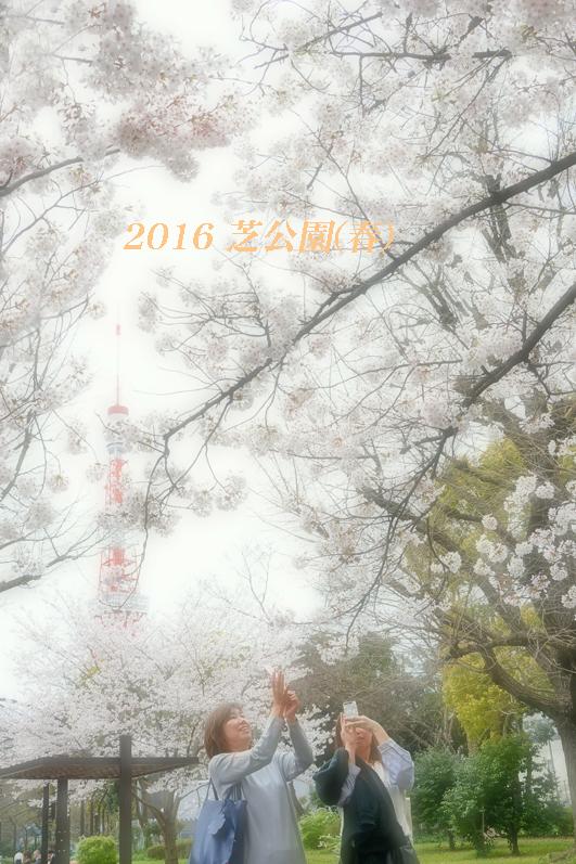 d0251161_10011713.jpg