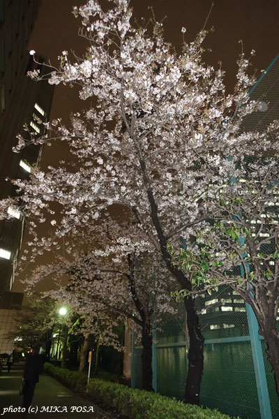 アニエスベー  2016 秋冬コレクション_b0164803_0304656.jpg