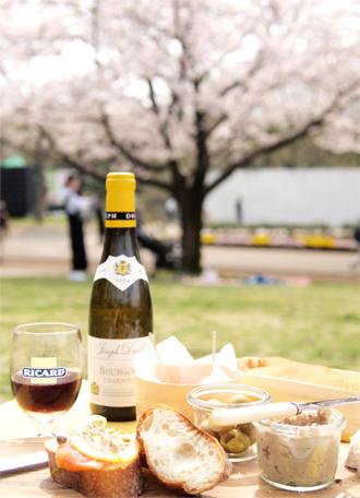 ほろ酔い、さくらピクニック。_d0174704_12594943.jpg