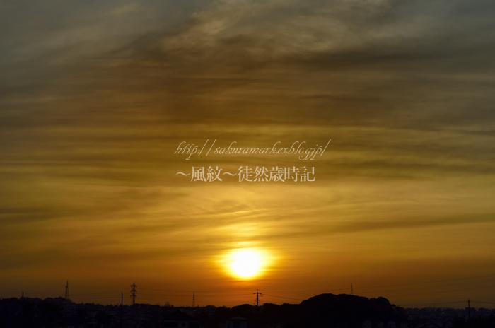 久々の夕陽。_f0235723_20515512.jpg