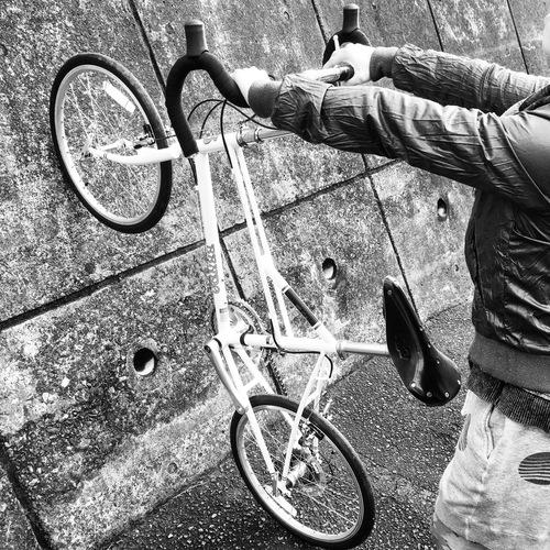 BRUNO 2016『Ventura』ベンチュラ ミキスト ミニベロ 700c ブルーノ おしゃれ 女子 自転車 ドロップ_b0212032_17405167.jpg