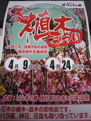 春の植木まつり_c0141652_1625823.jpg