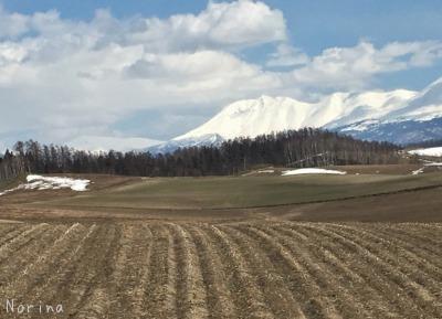 春一番のキトウシ山~東川_e0326953_6392469.jpg