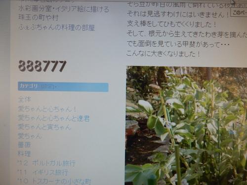f0060461_9312164.jpg