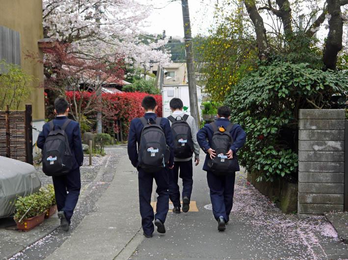 藤沢土木事務所職員4人が現地視察::緑の洞門通行禁止_c0014967_21511397.jpg