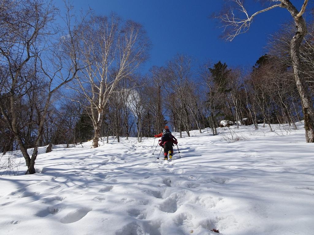 恵庭岳冬尾根、4月6日-同行者からの写真-_f0138096_22371458.jpg