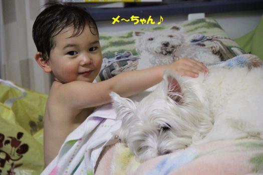 f0084422_20101468.jpg