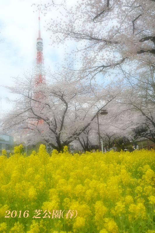 d0251161_16322191.jpg