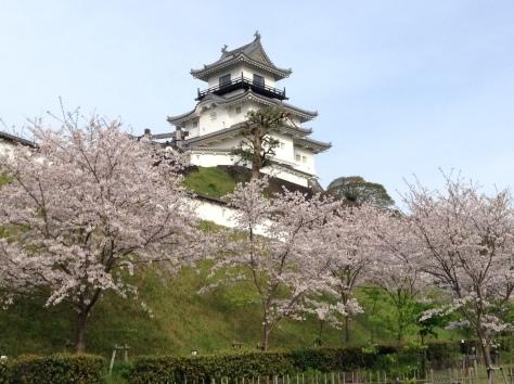 掛川城_c0360586_17570465.jpg