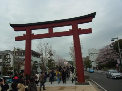 桜も終わり…_f0108001_18295638.jpg