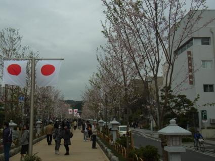 桜も終わり…_f0108001_18305392.jpg