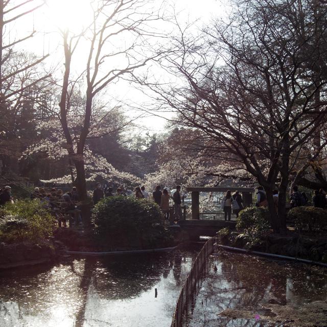神田川-(源流)_b0058021_8105410.jpg