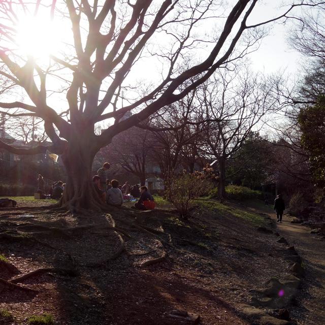 神田川-(源流)_b0058021_8105738.jpg