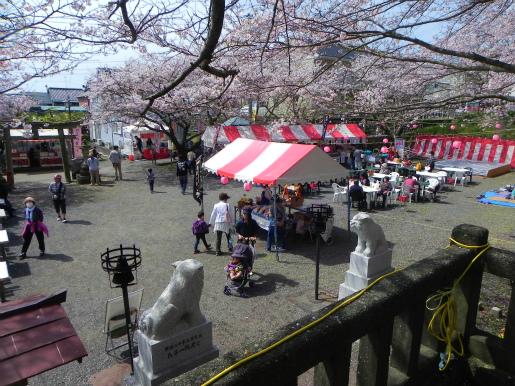 新蒲原の桜_c0087349_871951.jpg