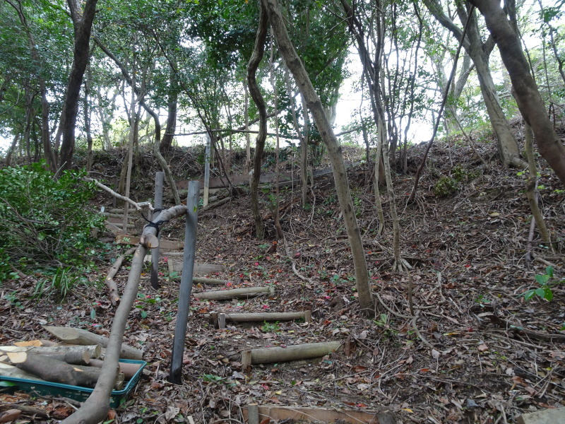 土木工事もできました in うみべの森_c0108460_22301871.jpg