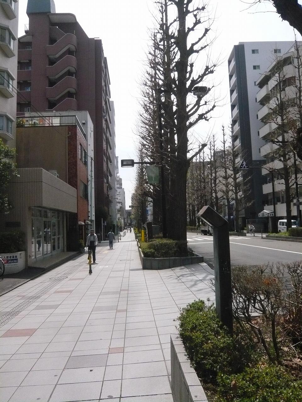 ポタリング 「桜」花見・東郷寺Ⅱ_a0262093_17140623.jpg