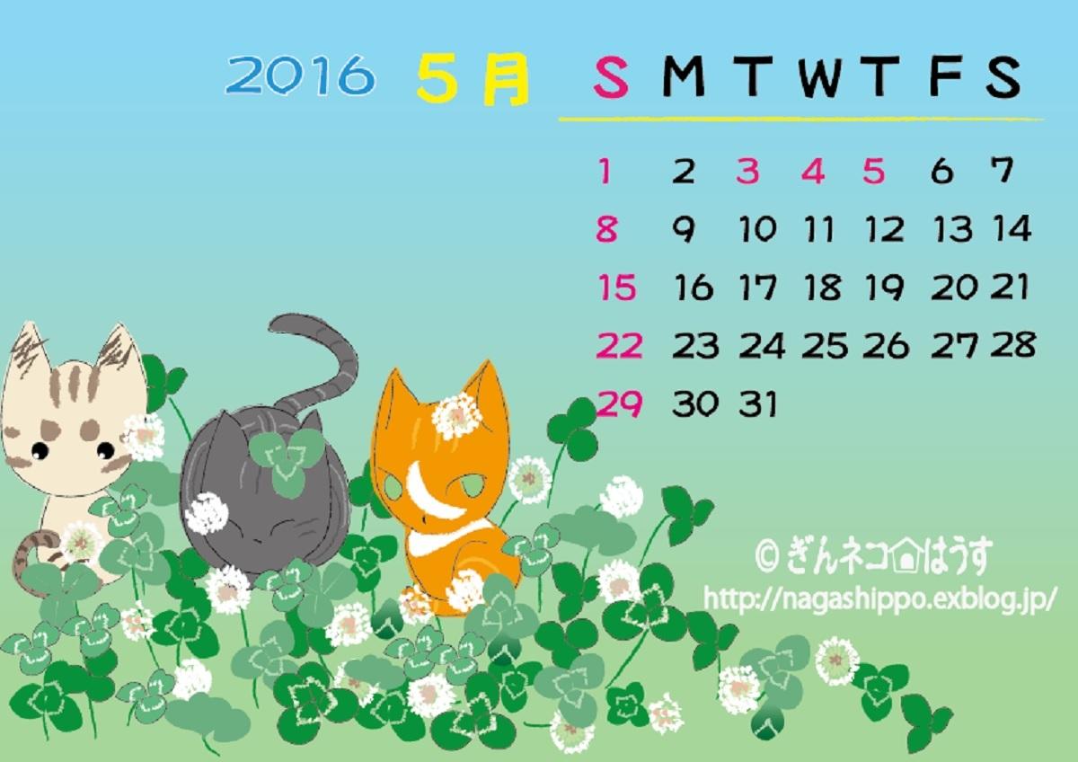 ぎんネコ☆はうす オリジナルカレンダー5月2016_a0333195_20465960.jpg