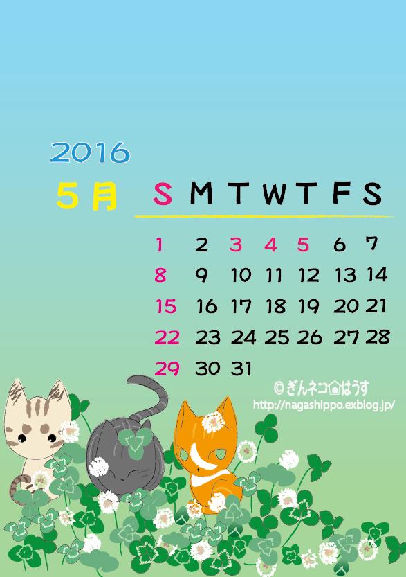 ぎんネコ☆はうす オリジナルカレンダー5月2016_a0333195_20490509.png