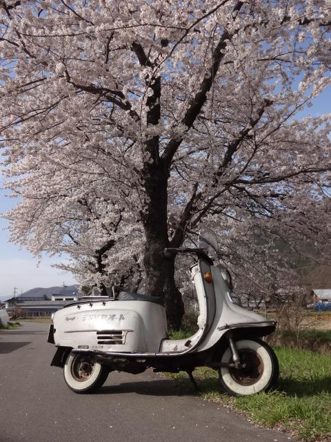 長野県に行って来ました。_e0177101_16594093.jpg