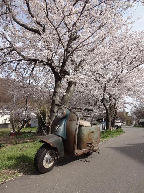 長野県に行って来ました。_e0177101_1753215.jpg