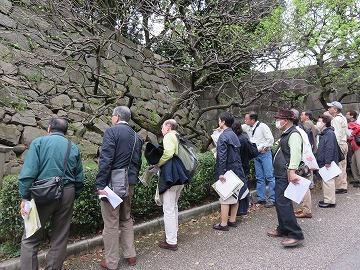 江戸城散歩を開催しました。_c0187004_17064948.jpg