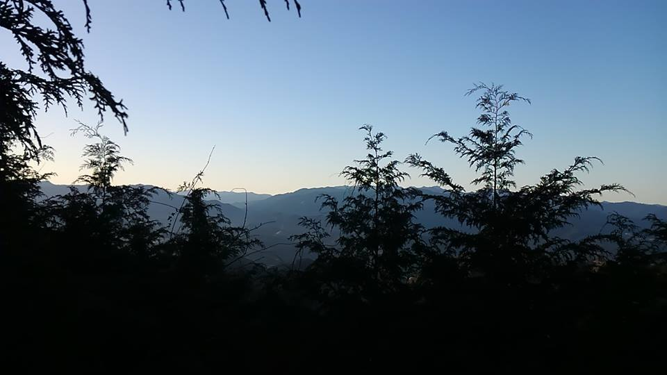 ▲山守コースを歩く(吉野やままち×月一山へ番外編)_a0355629_22415488.jpg