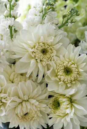 生花の偲ぶアレンジメント_d0167088_16521366.jpg