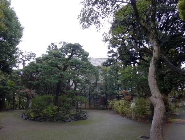 のんびり?駆け足? 高崎線で桜の小旅行2 早川から小田原へ~♪_a0136293_1720485.jpg