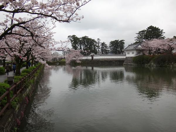のんびり?駆け足? 高崎線で桜の小旅行2 早川から小田原へ~♪_a0136293_19191029.jpg