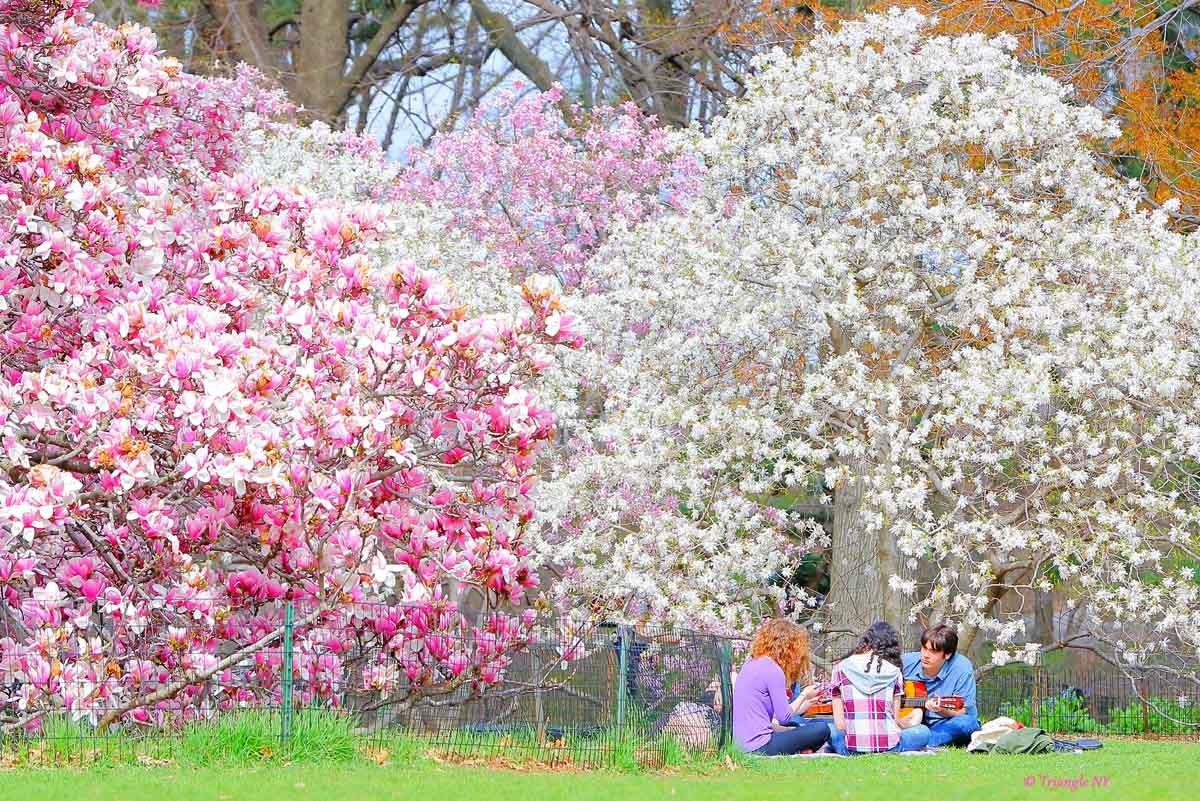 春だったね_a0274805_00193759.jpg