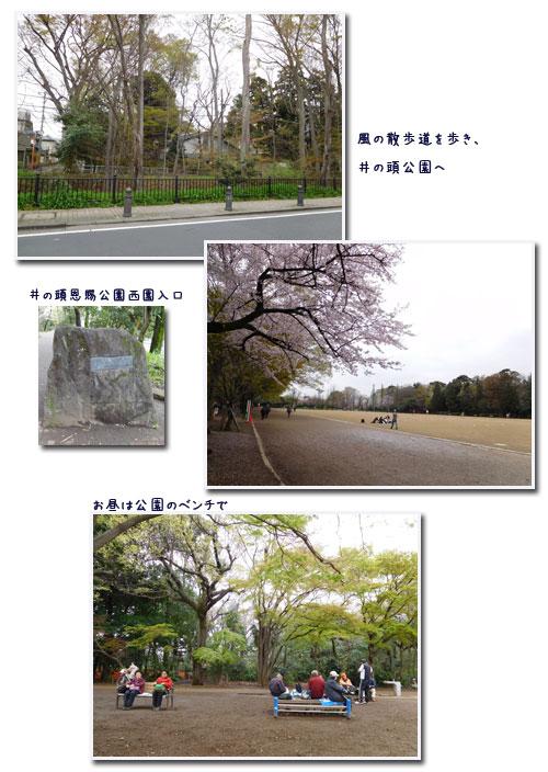 玉川上水ウォーキンギ 2 (三鷹駅~久我山駅)_c0051105_10545190.jpg