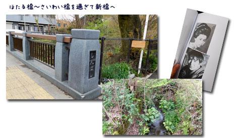 玉川上水ウォーキンギ 2 (三鷹駅~久我山駅)_c0051105_16244218.jpg