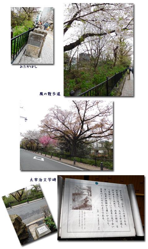 玉川上水ウォーキンギ 2 (三鷹駅~久我山駅)_c0051105_9474266.jpg