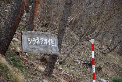 4月12日(火) はれ  1度_f0210811_11425723.jpg