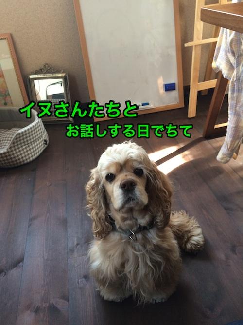 b0067012_213470.jpg