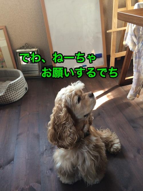 b0067012_231711.jpg