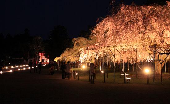 上賀茂神社ライトアップ_e0048413_21224742.jpg