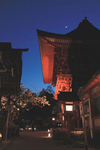 上賀茂神社ライトアップ_e0048413_2123563.jpg