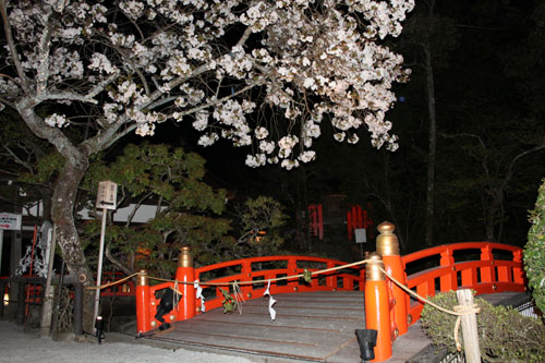 上賀茂神社ライトアップ_e0048413_2124235.jpg