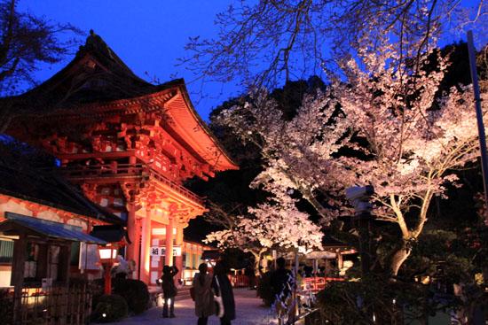 上賀茂神社ライトアップ_e0048413_2124823.jpg
